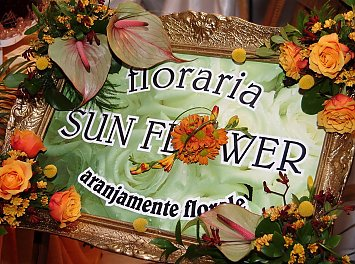 Sun Flower Nunta Alba