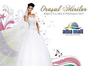 Targ de nunta Orasul Mirilor Alba 2013